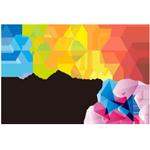 WCA2017平台精英赛