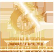 2017国家杯电子竞技大赛全球总决赛