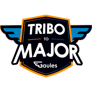 Tribo to Major 2020(南美RMR积分)